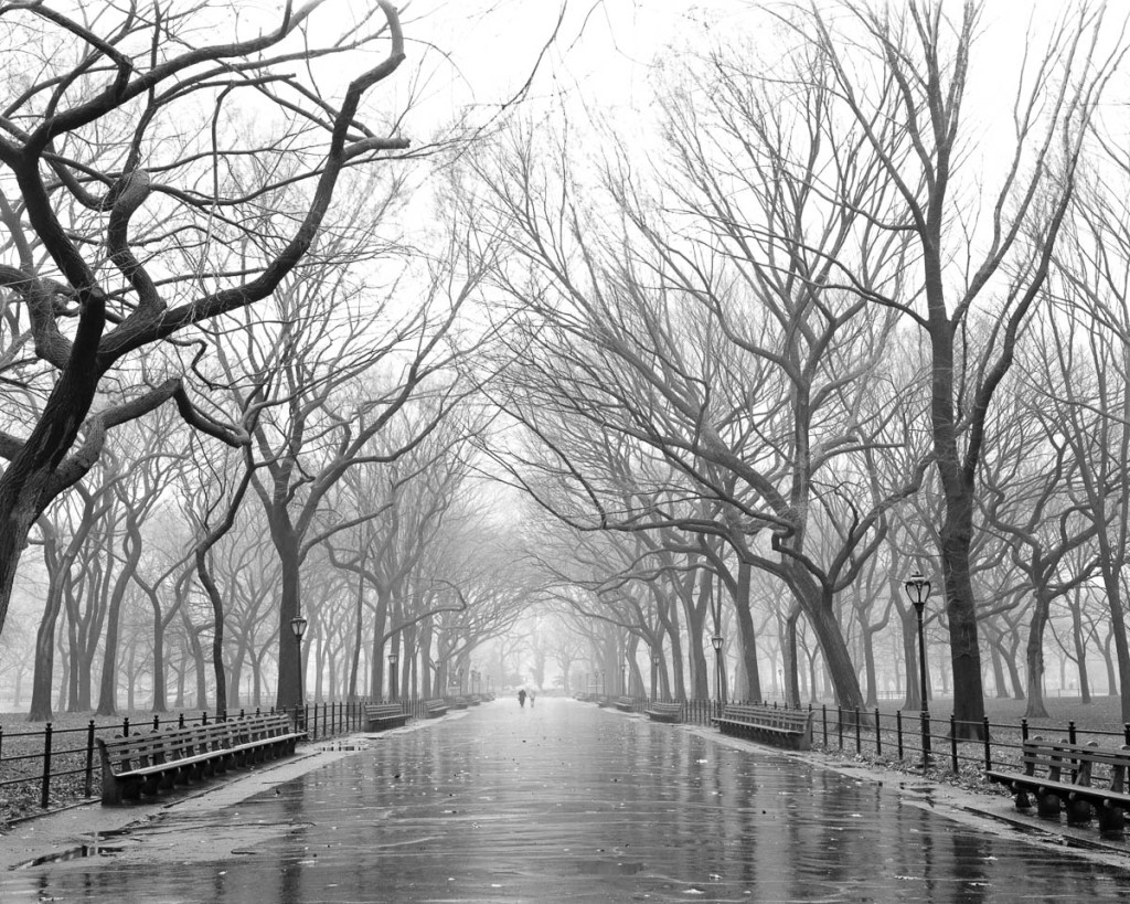 poets-walk-central-park